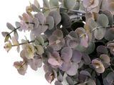 Umelý eukalyptus k aranžovaniu
