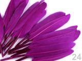 Kačacie perie dĺžka 9-14 cm