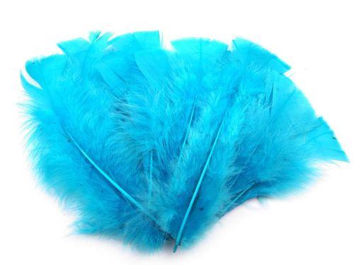 Morčacie perie dĺžka 11-17 cm