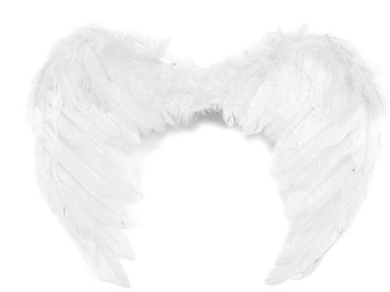 Anjelské krídla 35x45 cm