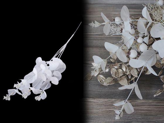Umelý eukalyptus biely